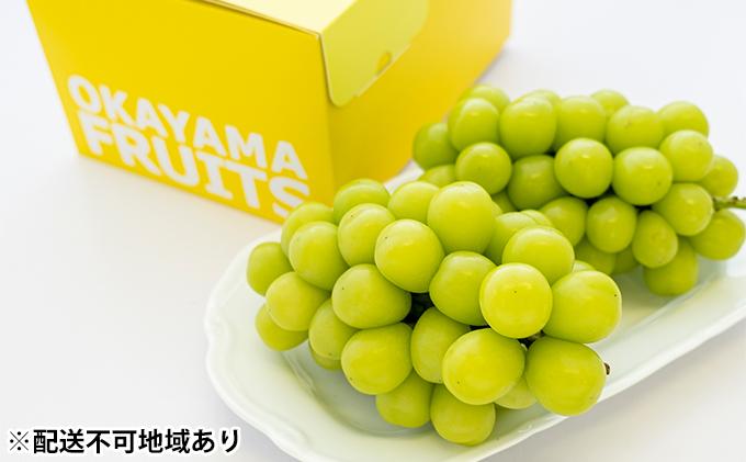 ●先行予約受付●ご家庭用 岡山県産 シャインマスカット 2~3房(約1.2kg)