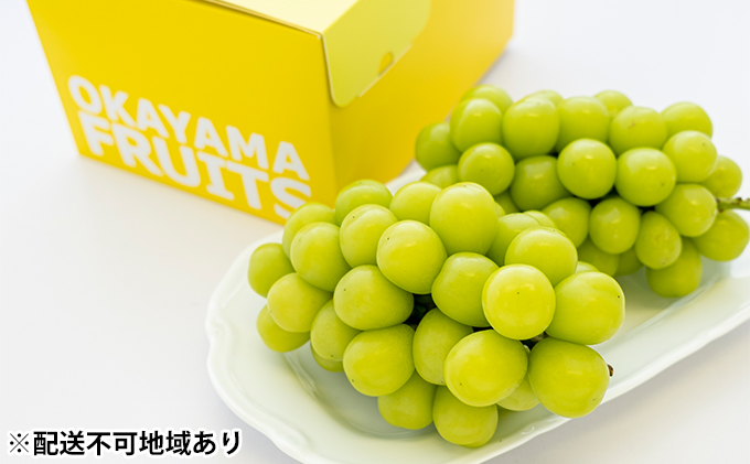 ご家庭用 岡山県産 シャインマスカット 2