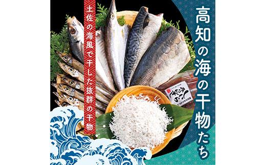 高知の海の干物たち<土佐の海風で干した抜群の干物を><高知市・南国市共通返礼品>