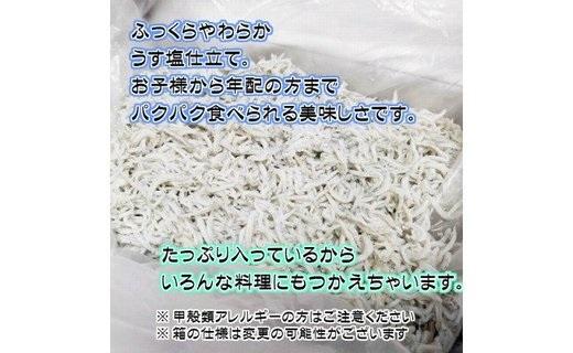 和歌山県湯浅町のふるさと納税 BD6036_湯浅湾の釜揚げしらす!たっぷり1.4kg(700g×2)【訳あり 家庭用】