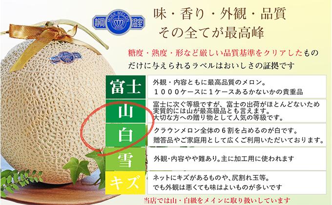 静岡県浜松市のふるさと納税 クラウンメロン特上1玉+うなぎ蒲焼4本セット【配送不可:離島】