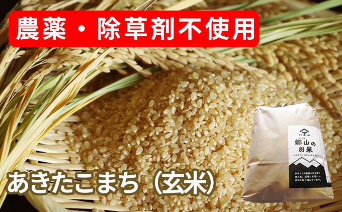 農薬・除草剤不使用で栽培したあきたこまち「郷山のお米 10kg」(5kg×2袋 玄米)