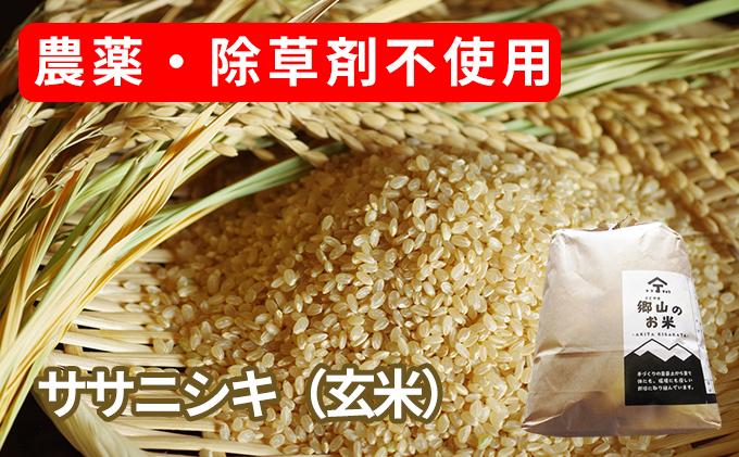 農薬・除草剤不使用で栽培したササニシキ「郷山のお米 20kg」(5kg×4袋 玄米)