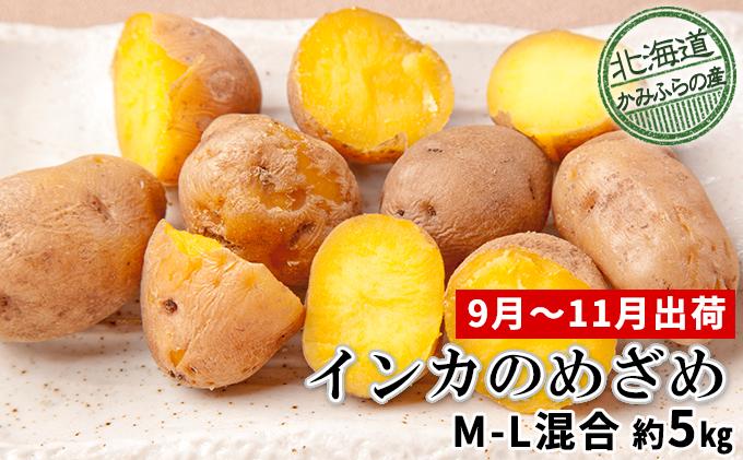 じゃがいも【インカのめざめ】約5kg(M~L混合)≪北海道上富良野産≫