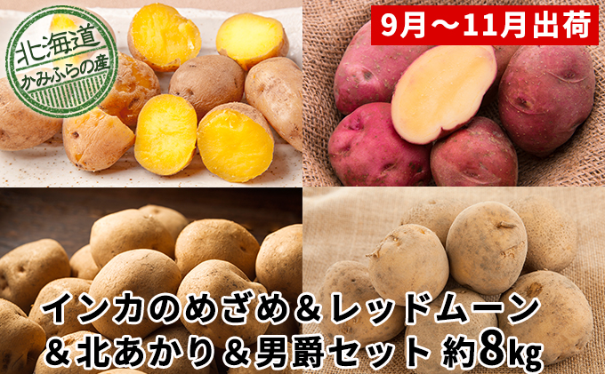 じゃがいも4種食べ比べセット計約8kg≪北海道上富良野産≫