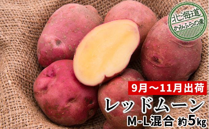 じゃがいも【レッドムーン】約5kg(M~L混合)≪北海道上富良野産≫