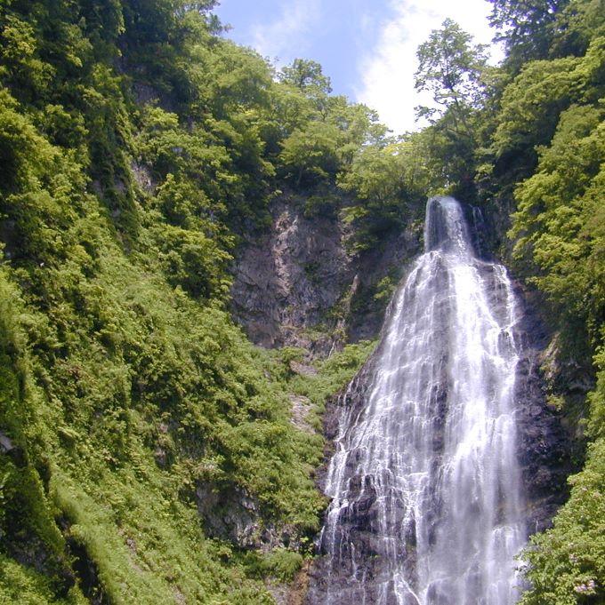 【青森県鰺ヶ沢町】世界自然遺産 白神山地トレッキングガイド ~くろくまの滝コース~