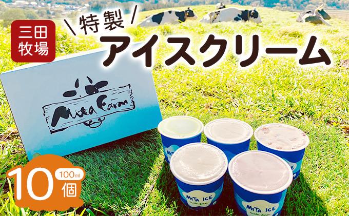 三田牧場 特製アイスクリーム10個セット
