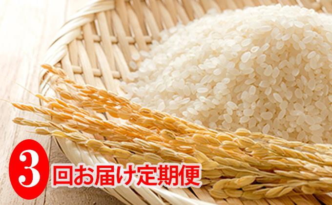 ◆3ヶ月連続定期便◆JAきょうわ米  ななつぼし5kg