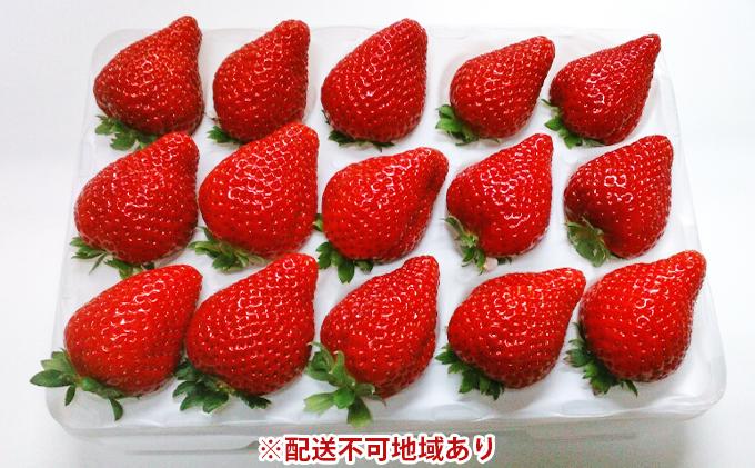 福崎町産いちご詰合せ【収穫当日お届け:関西エリア(一部地域を除く)】