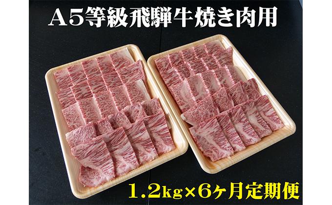 【6ヶ月定期便】A5等級 飛騨牛 焼き肉用 1.2kg ロース又は肩ロース肉