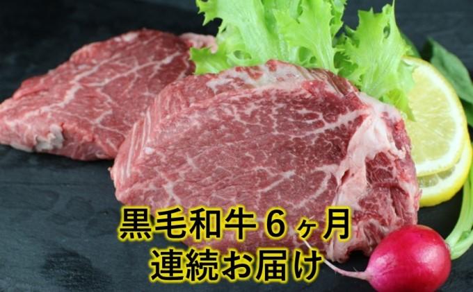 熊本県産 黒毛和牛 ヒレステーキ #300g【6回定期便】