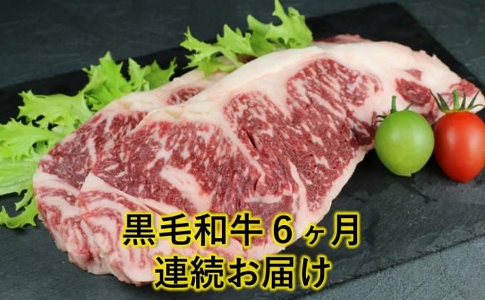 熊本県産 黒毛和牛 ロースステーキ 500g【6回定期便】
