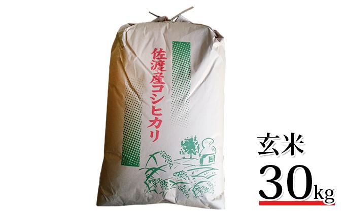 【令和2年産】高島農場 農薬不使用コシヒカリ30kg(玄米)
