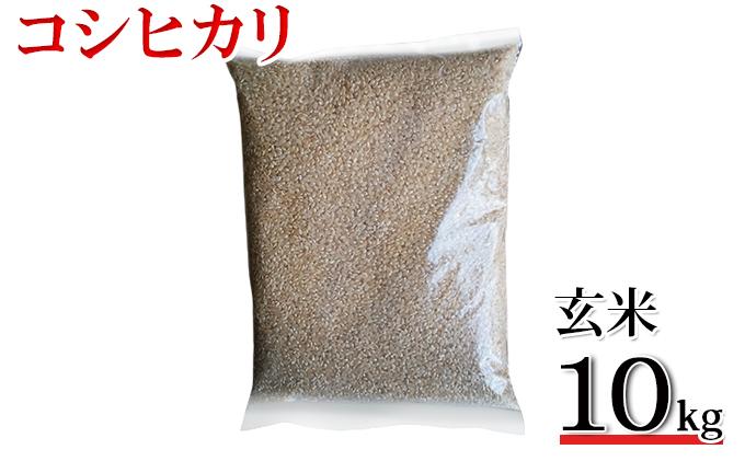 【令和2年産】高島農場 農薬不使用コシヒカリ10kg(玄米)
