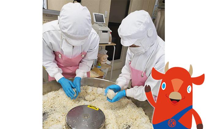 北海道木古内町のふるさと納税 木古内産 はこだて和牛コロッケ&バラエティセット