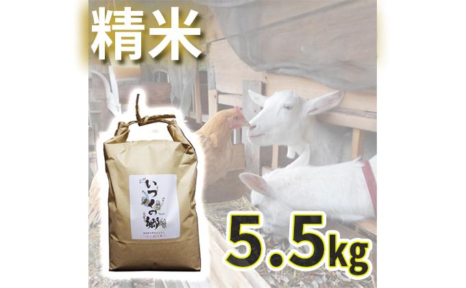 自然栽培 はざ掛け天日干しササニシキ【白米】5.5キロ