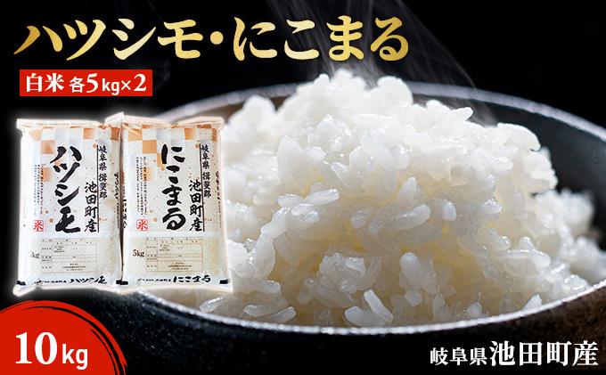 池田町産 ハツシモ・にこまる白米各5kg