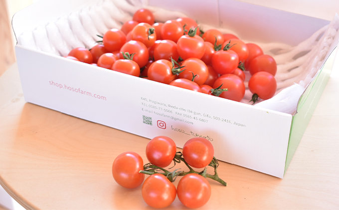 弾けるトマトの甘味と旨味!ミニトマト「トマリー」 (1kg)