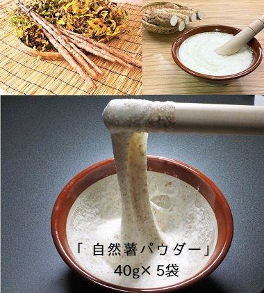 「自然薯をおろさなくていいんです!」水で溶いて手軽に召し上がれるフリーズドライの粉末「自然薯パウダー」40g×5袋