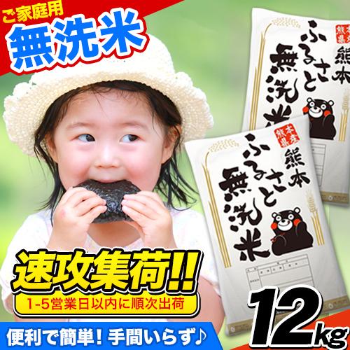 ご家庭用 熊本ふるさと無洗米12kg 熊本