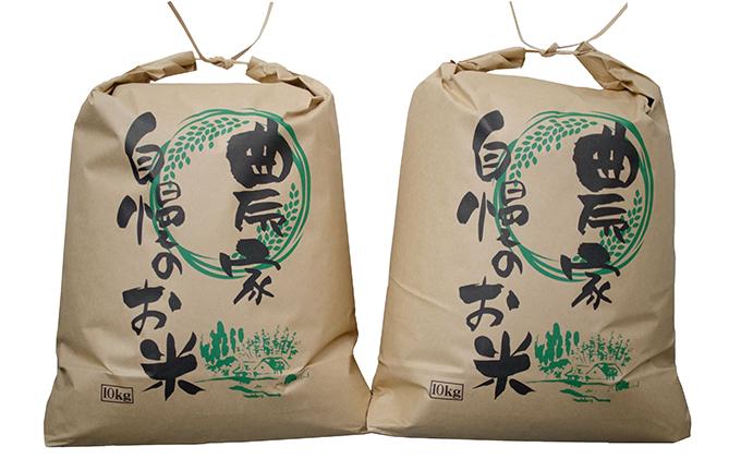 福井県若狭町コシヒカリ20kg【訳あり】(一等米)【令和2年産】(たごころ農園)