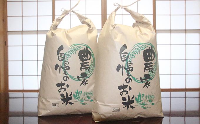 福井県若狭町コシヒカリ20kg【訳あり】(一等米)【令和2年産】(山心ファーム)