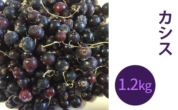 峠のふもと紅果園の冷凍カシス約1.2kg(600g×29【ブラックカラント】