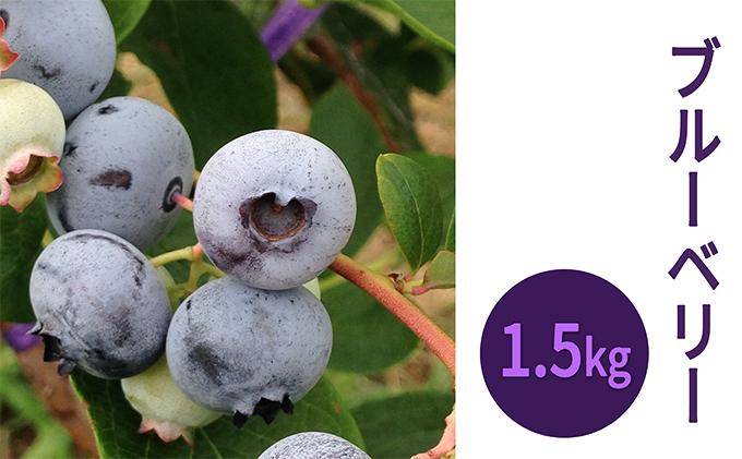 峠のふもと紅果園の冷凍ブルーベリー約1.5