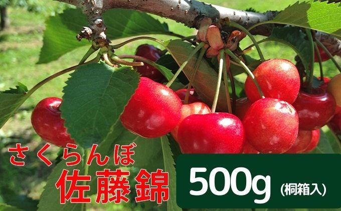 令和3年・峠のふもと紅果園のさくらんぼ【佐藤錦】一段並べ 350g