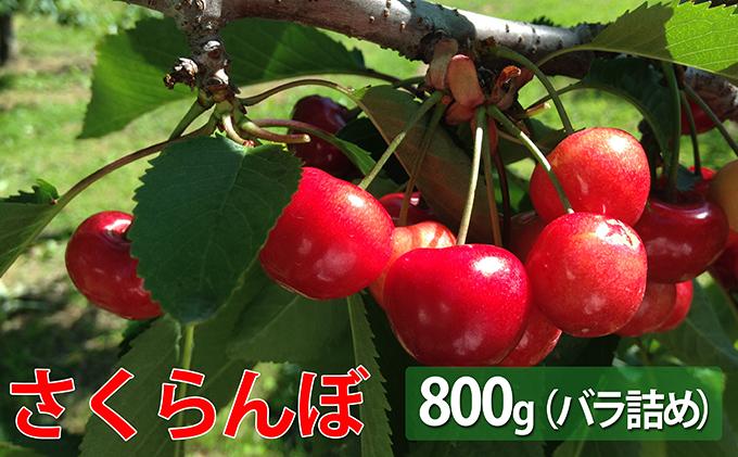 令和3年・峠のふもと紅果園のさくらんぼ【佐藤錦】又は【紅秀峰】800g