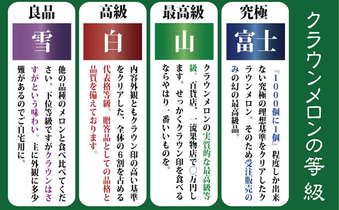 静岡県浜松市のふるさと納税 クラウンメロンアイススティック(約40g×10本入)ギフト箱【6ヶ月定期便】