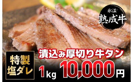 010B537 氷温(R)熟成牛 特製塩ダ