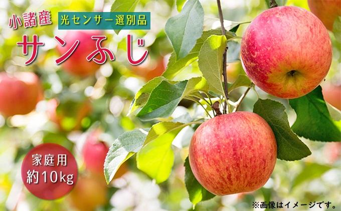 信州小諸産 サンふじりんご 家庭用 約10