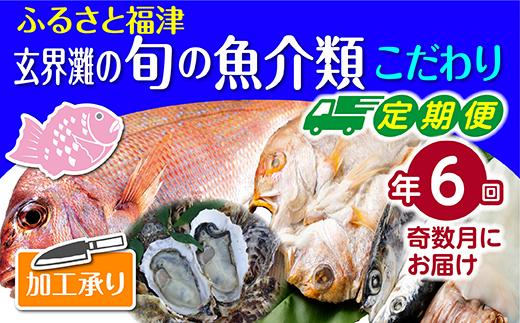 【年6回奇数月】福津の旬の魚介類こだわり定期便【加工承り】【随時開始】[C6480]
