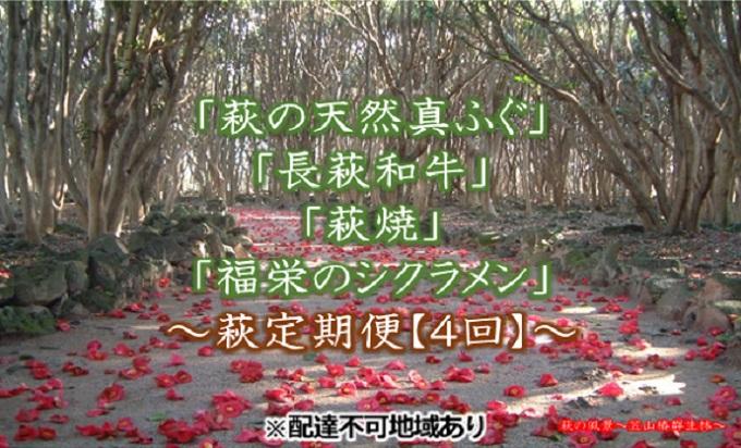 萩の天然真ふぐ・長萩和牛・萩焼・シクラメン【萩定期便4回】