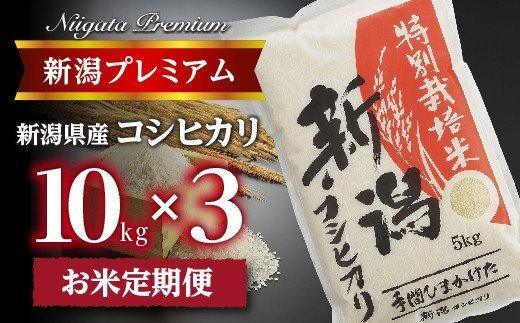 【令和2年産】『定期便』新潟プレミアム 特別栽培米 コシヒカリ 白米10kg×3か月 CS045003