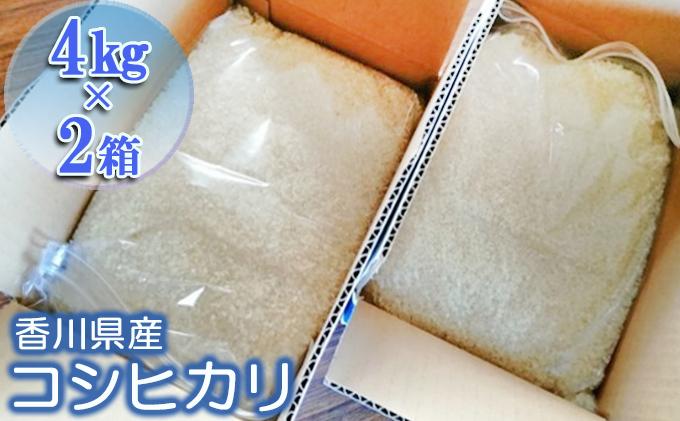 令和3年 コシヒカリ新米予約!(精米8kg)4kg×2