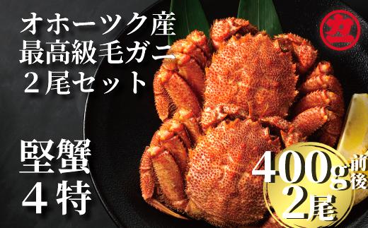 18-16 オホーツク産【四特】毛ガニ 4
