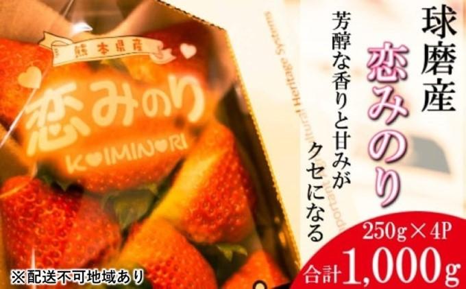 「先行予約」錦町産 イチゴ 恋みのり 約2