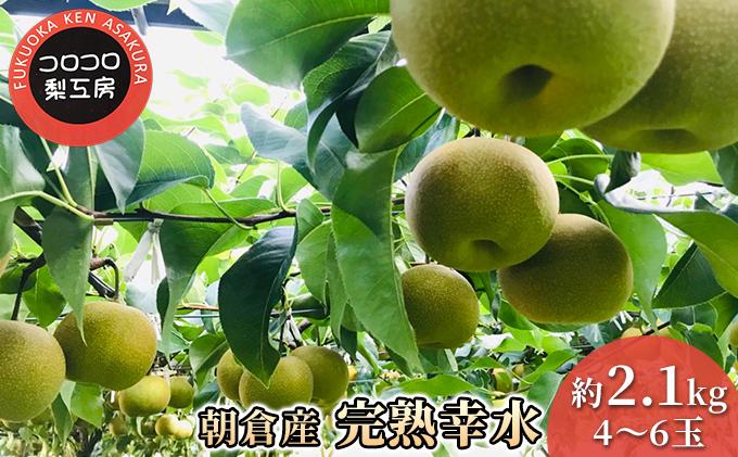 まるで食べる 梨 ジュース!!【完熟 幸水