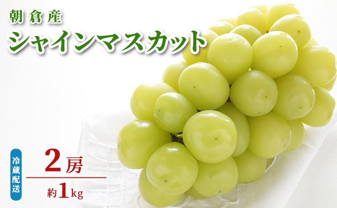 シャインマスカット(約1kg)【初恵のぶど