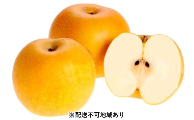 朝倉・旬の梨 約2.5kg<林農園>※配送