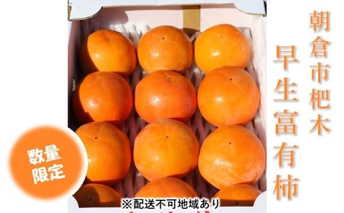 早生 富有柿 Lサイズ×12個入★マルハツ商店【配送不可:離島】