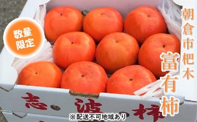 志波の富有柿 L~2Lサイズ×9個入★マルハツ商店【配送不可:離島】