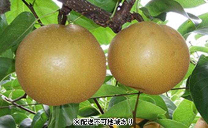 梨(豊水)3kg<筑前あさくら農協>※配送不可:離島