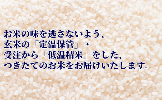 北海道紋別市のふるさと納税 11-99 令和2年産 北海道産ななつぼし10kg(5kg×2袋) 【つきたてそのまま・低温精米】(ポリ袋)
