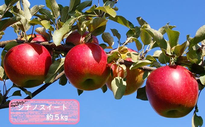 信州小諸・福井りんご園のシナノスイート 秀品 約5kg
