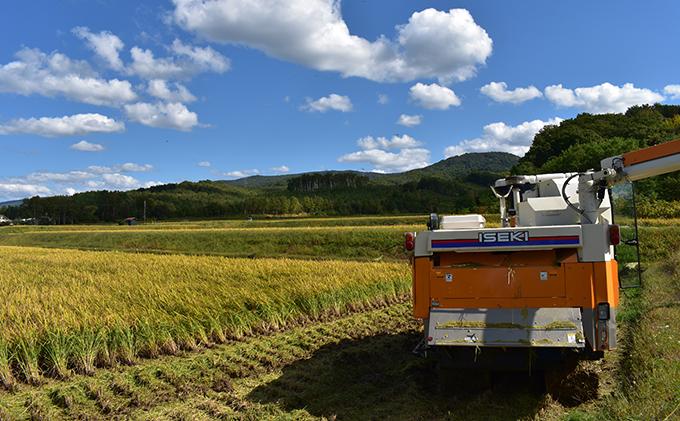 北海道仁木町のふるさと納税 ◆2021年6月配送限定◆銀山米研究会の無洗米<ななつぼし>20kg(5kg×4)