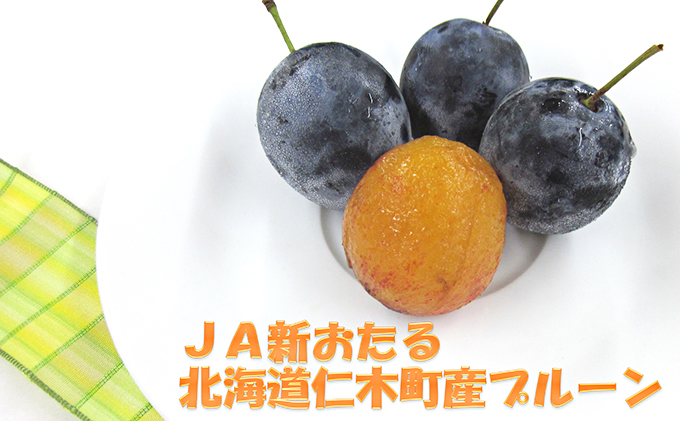 JA新おたるの季節のプルーン1.6kg(北海道仁木町産)
